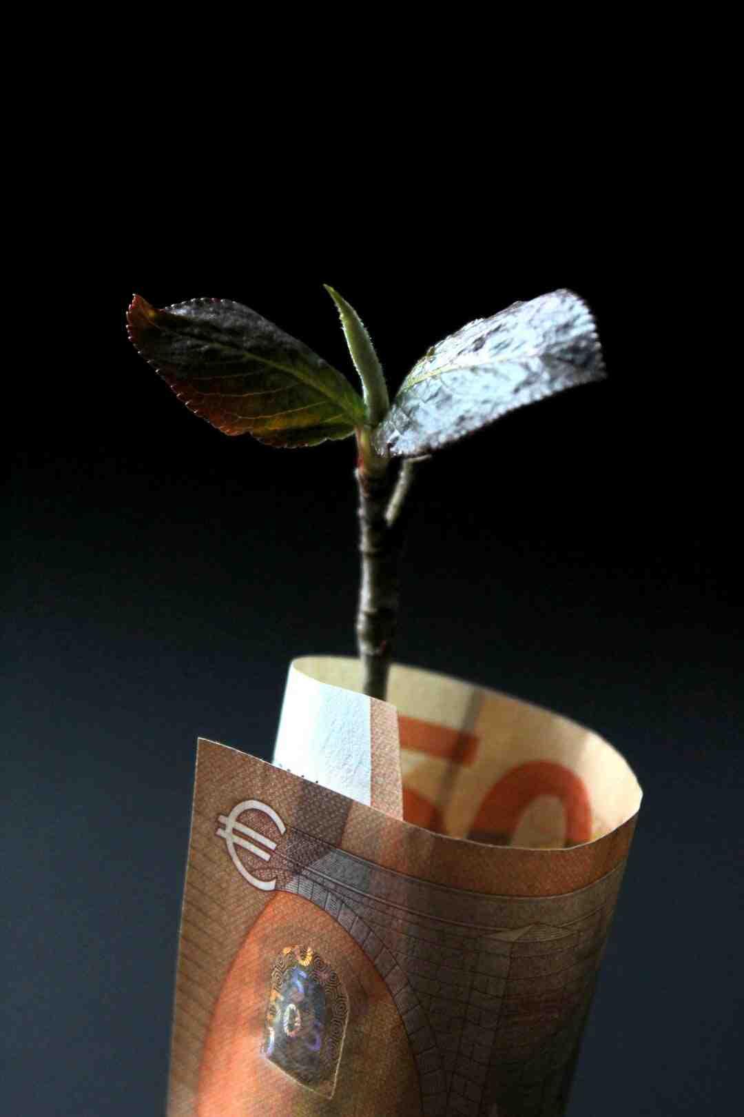 Qui détient le Crédit Mutuel ?